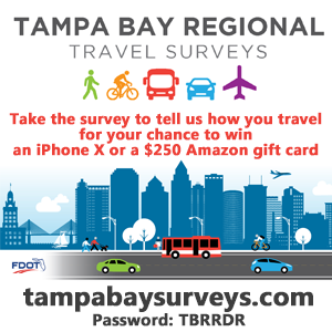 Tampa Bay Regional Travel Survey