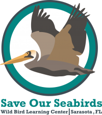 Save Our Seabirds
