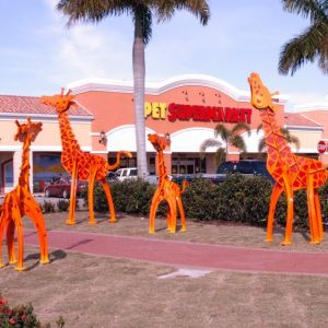 Giraffes at Cocoplum Village Shops-North Port