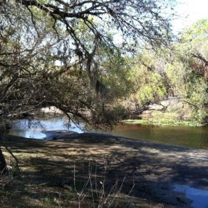 Myakkahatchee Creek Environmental Park