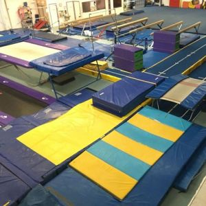 Princess Gymnastics Camp at Horizon Gymnastics