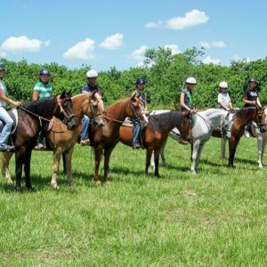 Rosaire's Riding Academy and Pony Rides - Lessons