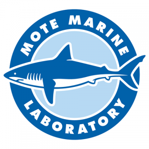Mote Marine Laboratory Homeschool Programs