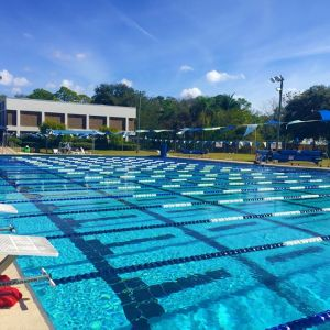 Arlington Park & Aquatic Complex Swim Lessons