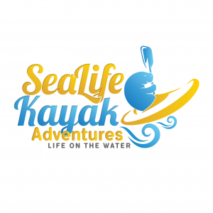 Sea Life Kayak Adventures